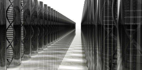 DNA构成的有机计算机能人类处理数据
